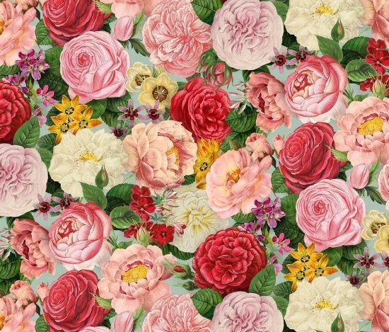 Roses #fabric