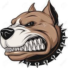 Resultado De Imagen Para Imagenes Dibujos De Perros Bravos