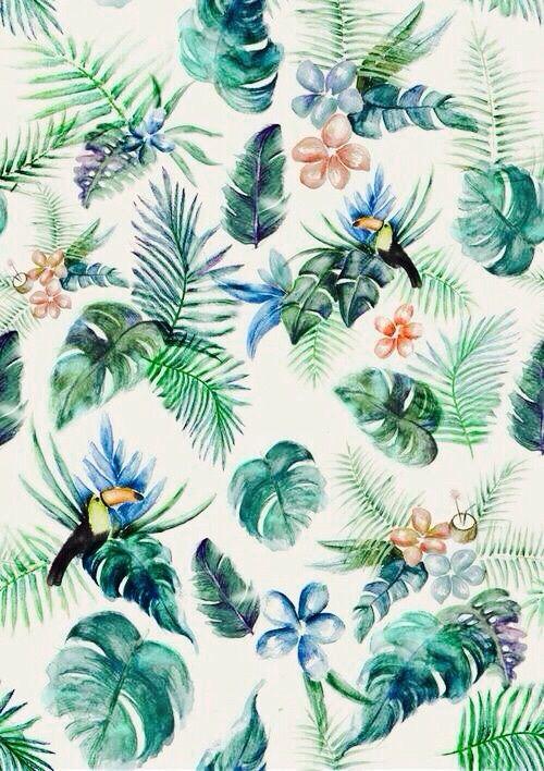 Imagen de background, wallpaper, and tropical
