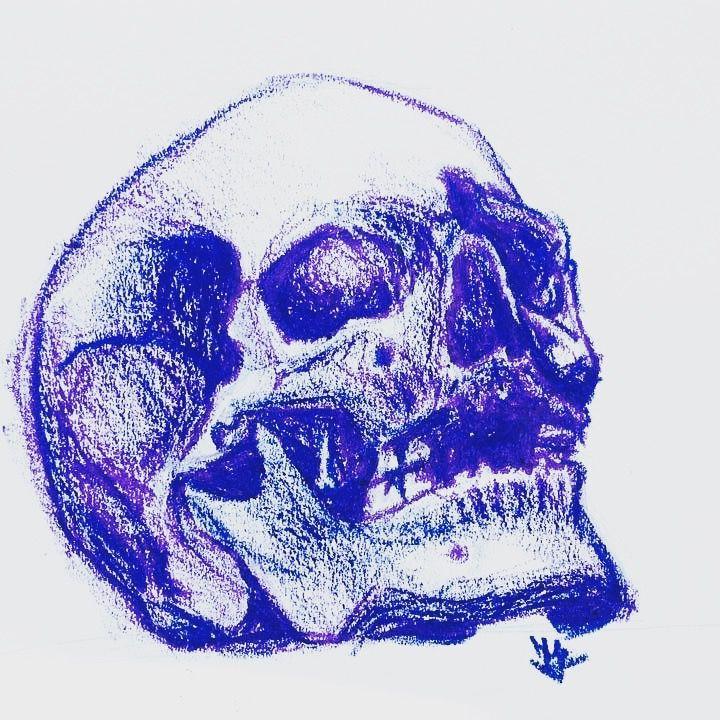 Schädelanatomie | Kunstspalte | Pinterest