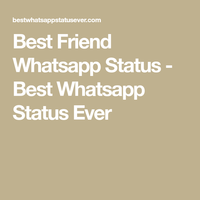 Here In Best Whatsapp Status Ever You Can Get All The Best Friend