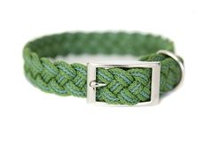 braided collar from Kiss My Mutt (i love the name)