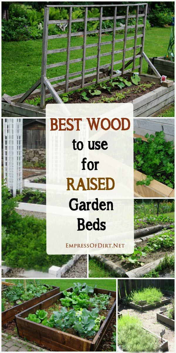 Merveilleux Tips For Choosing The Best Wood For Raised Garden Beds