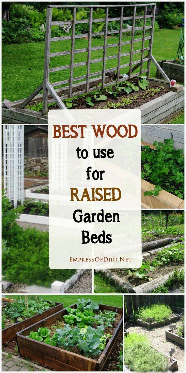 Best Wood For Raised Garden Beds Empress Of Dirt Raised Garden Vegetable Garden Raised Beds Raised Garden Beds
