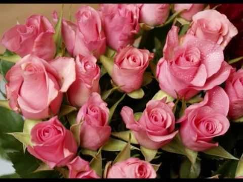 Feliz cumpleaños a mi mujer rosas grandes Tarjeta de Cumpleaños Love By Gibson