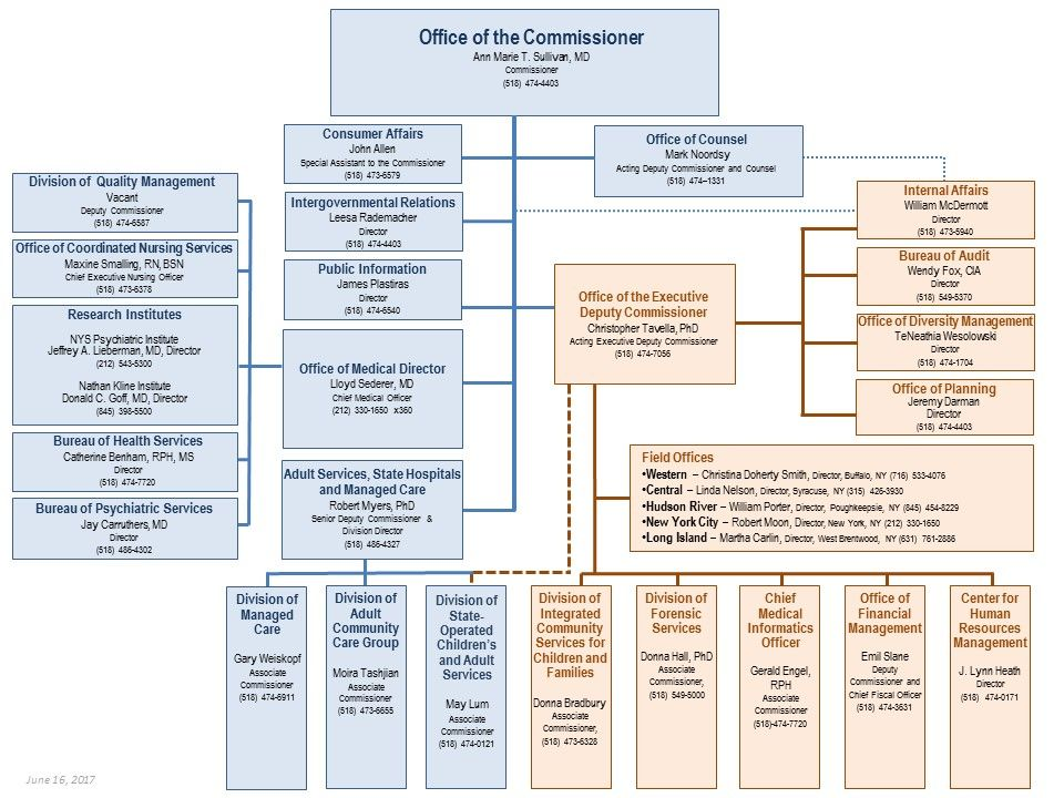 New York State Office Of Mental Health Organization Chart  Mental