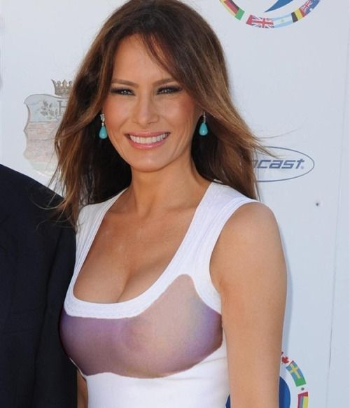 Image result for melania trump see through