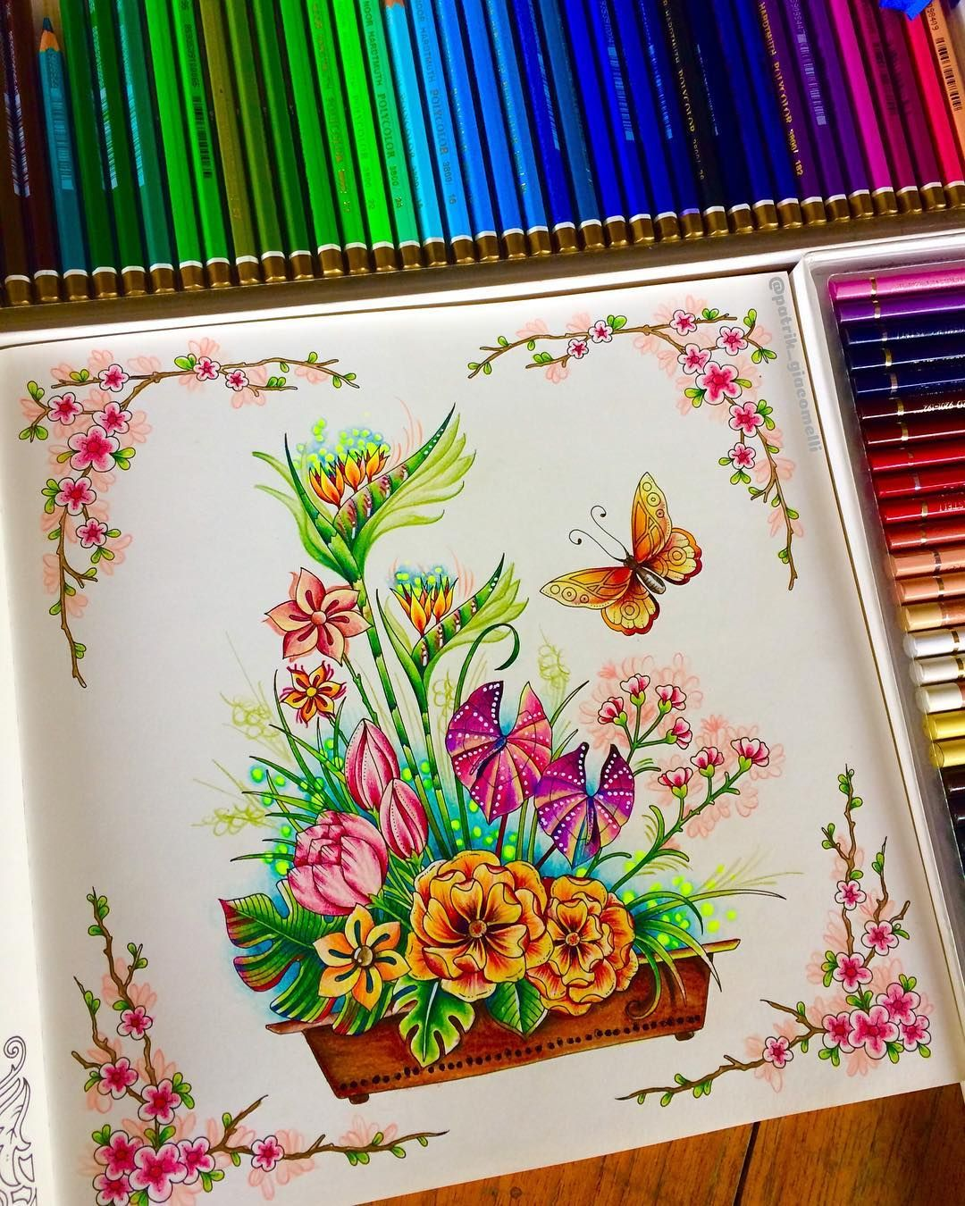 13 World of Flowers - Johanna Basford Completed pages ideas