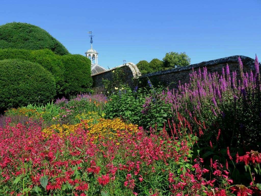 Kingston Lacy NT English garden, Landscape, Nature