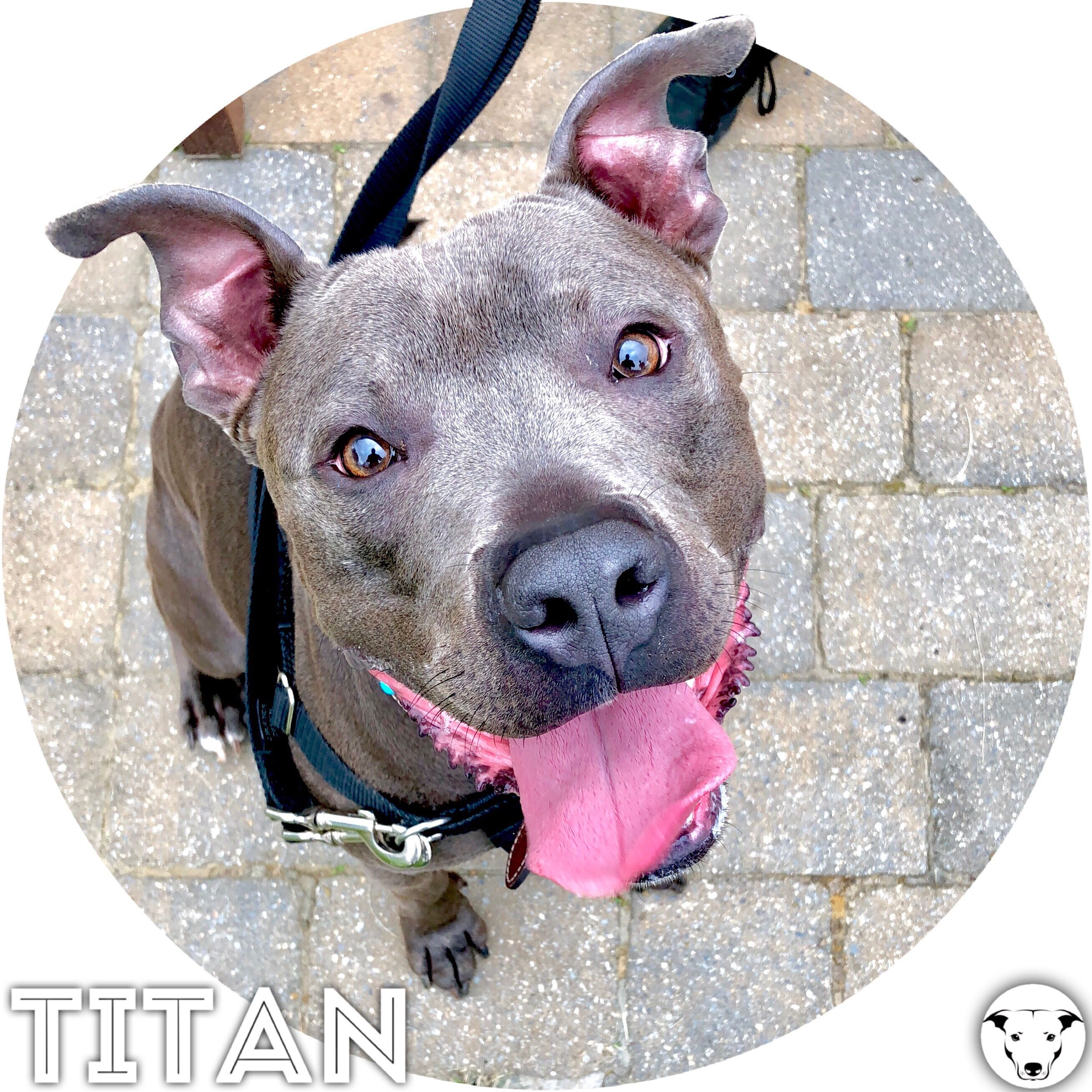 Titan Has Been A Training Client Of Ours For Two Years And Is