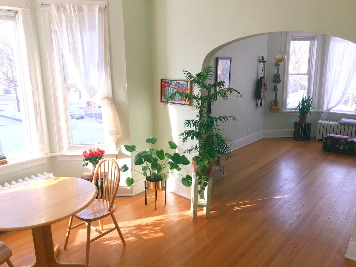 Sunny Vintage Apartment With Happy Plants Vintage Apartment Vintage Apartment Decor Apartments For Rent
