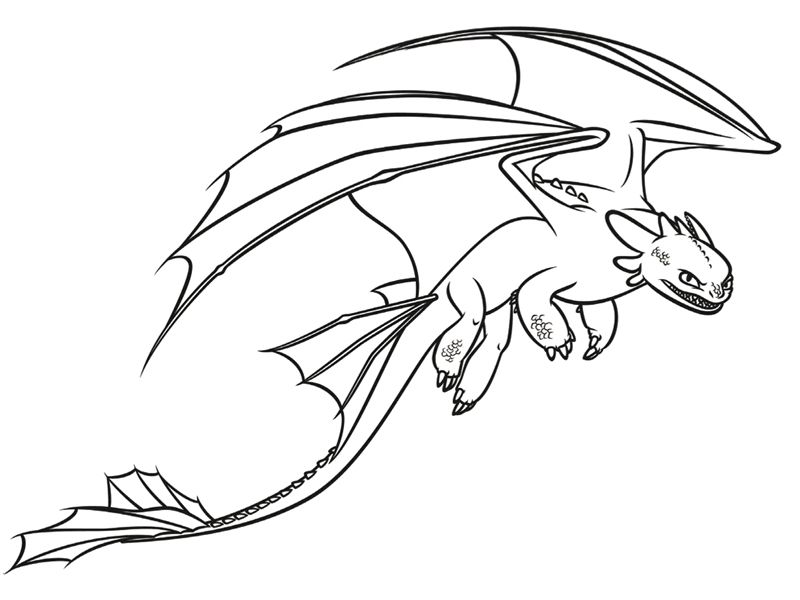 Dragon of Berk | Dragons | Pinterest | Dragons and Patterns