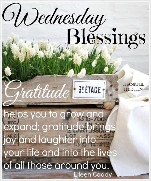 Morning Blessing Quote: Wednesday Blessings