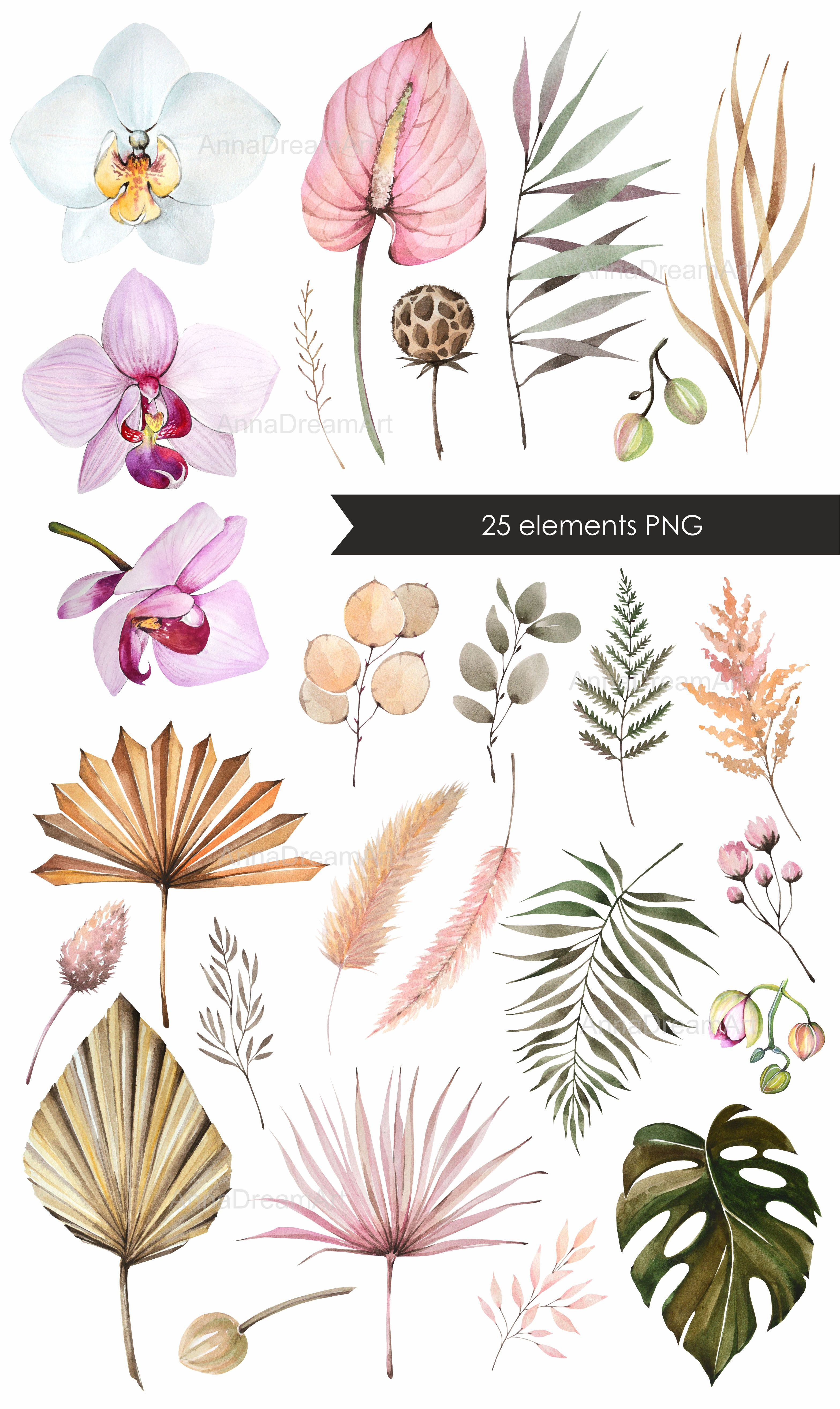 Watercolor Clipart Dried Tropical Flowers And Leaves Boho Wedding Invitation Flowers Set Orchids Palm Leaves Png In 2021 Tropical Flowers Illustration Flower Drawing Watercolor Flowers