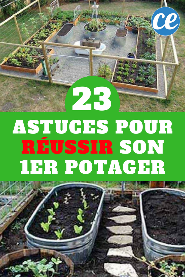 23 astuces de mara cher pour r ussir son premier potager maraicher r ussir et potager. Black Bedroom Furniture Sets. Home Design Ideas