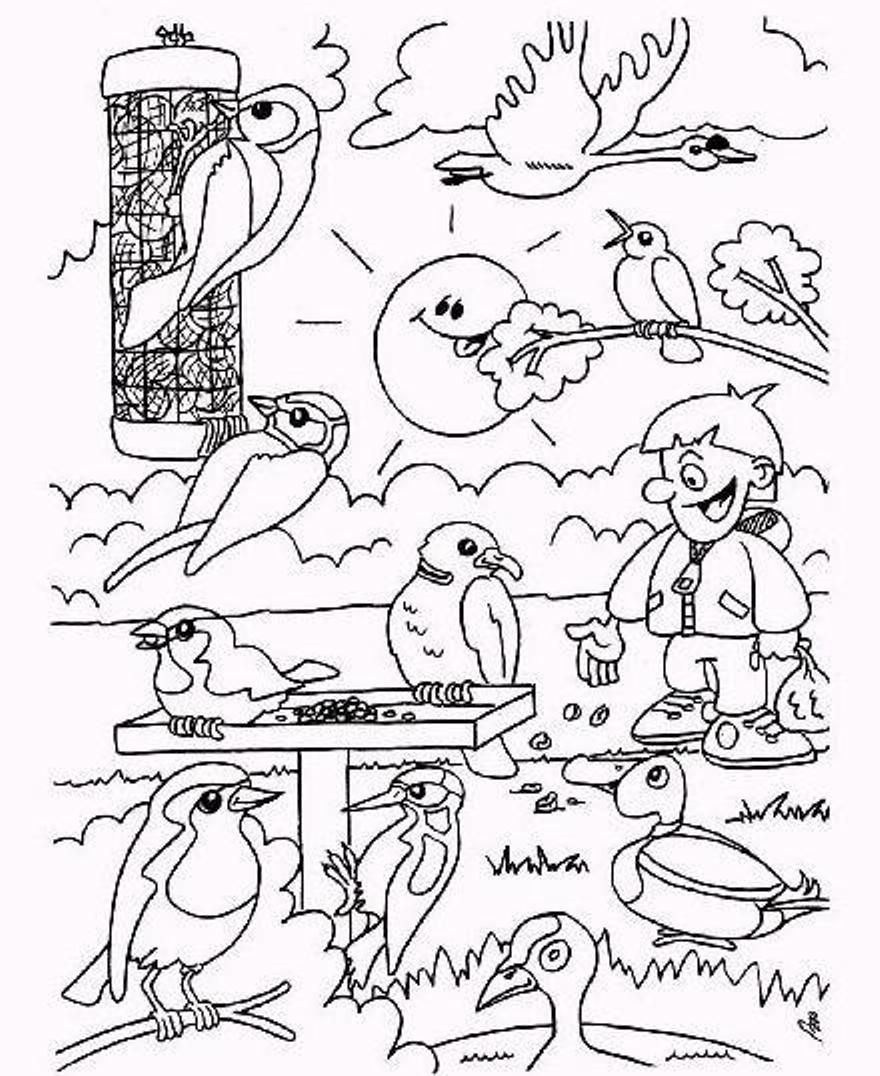 Kleurplaten Wintervogels.Vogels In De Winter Vogels Winter En Kleurplaten