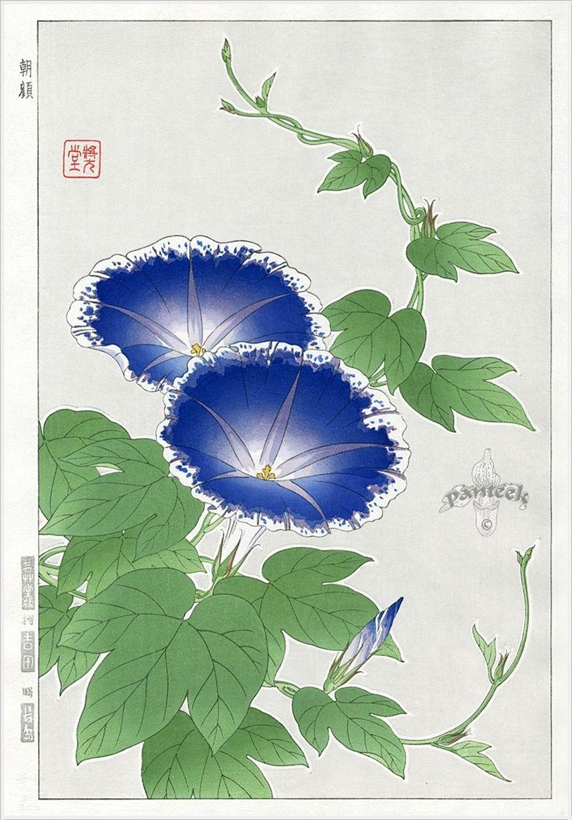 Shodo Kawarazaki. Японские гравюры Japanese art styles