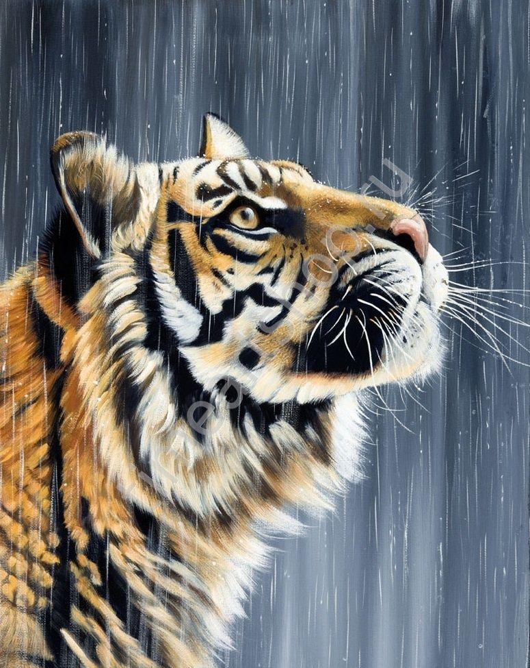 Тигр под дождём, картина раскраска по номерам по холсту ...
