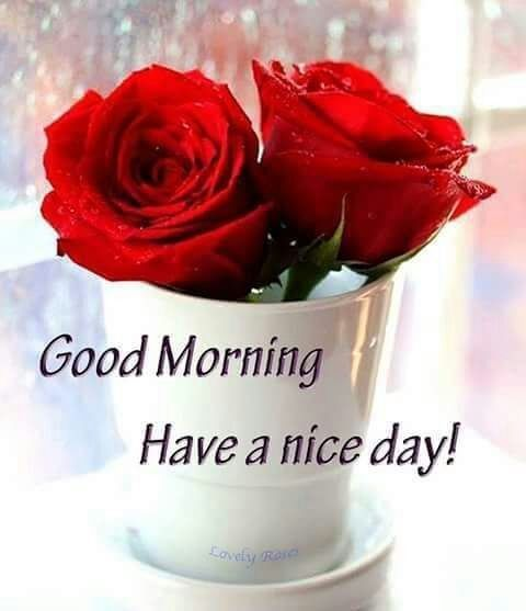 Good Morninghave A Nice Day Good Morning Pinterest Morning