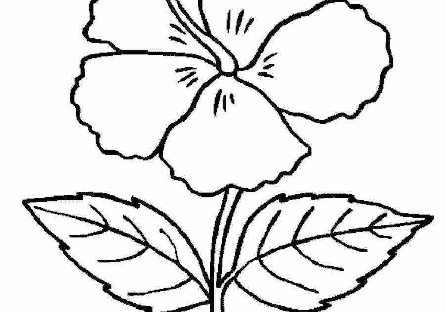 Fantastis 16+ Gambar Bunga Yg Mudah di 2020 | Lukisan ...