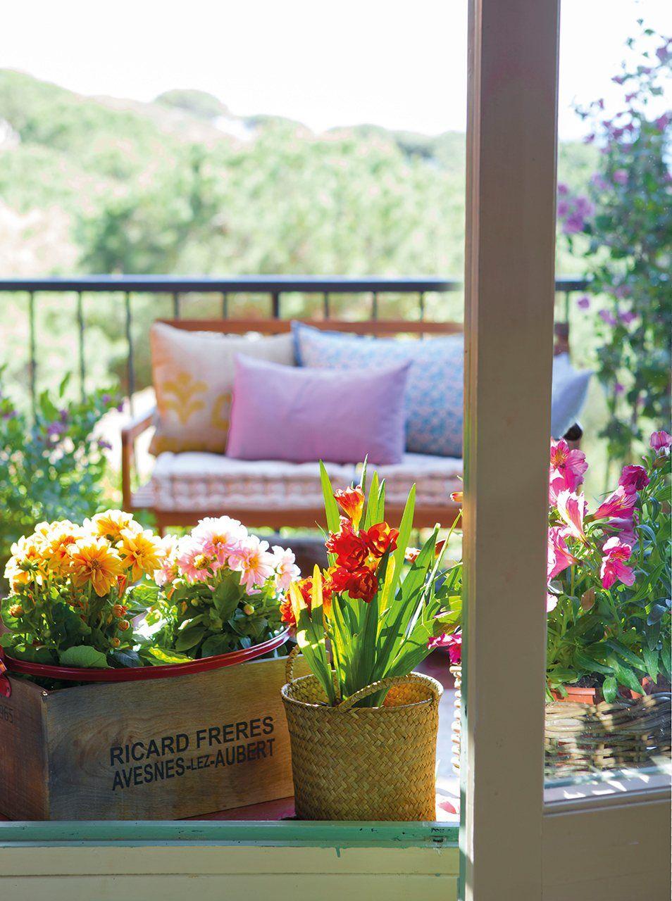 Crea Un Jardin En La Ventana Decorando Con Flores Plantas Terraza Ventanas Ideas De Jardineria