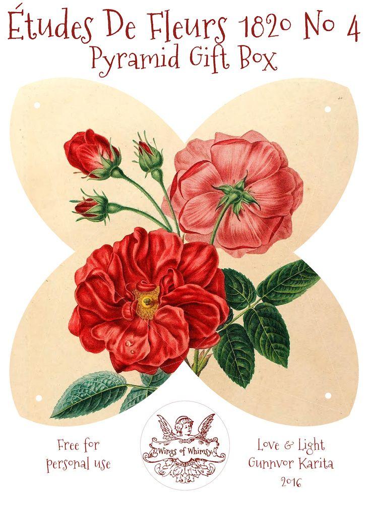 Wings Of Whimsy Etudes Des Fleurs No4 Ca 1820