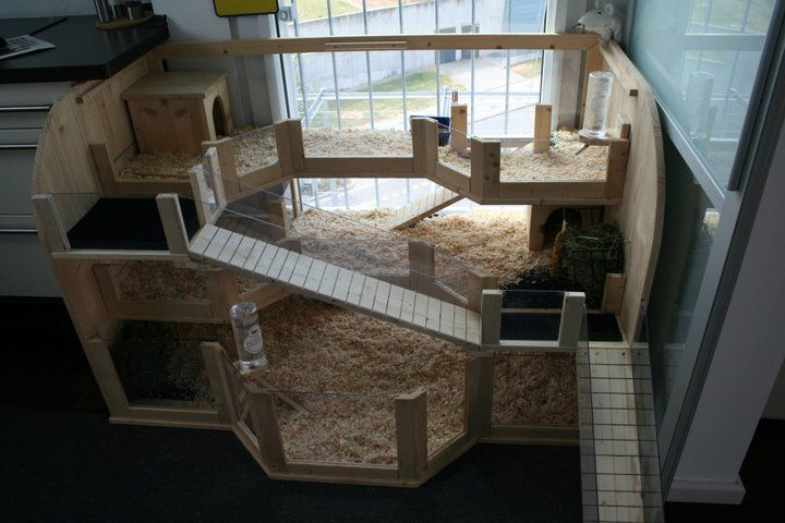 Guinea pig cage ideas on pinterest guinea pig cages for Guinea pig homes