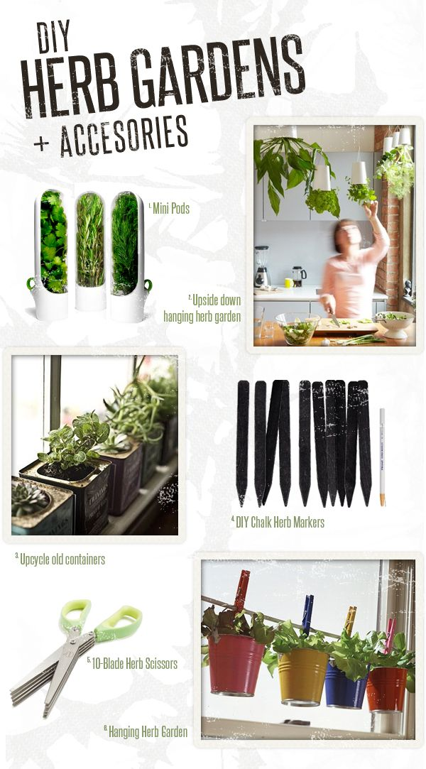 DIY Herb Gardens and Accesories