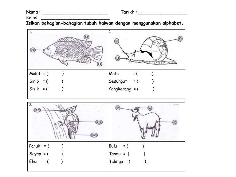 Latihan Bahasa Melayu Tadika 6 Tahun Google Search School Kids Activities Subtraction Activities Preschool Worksheets