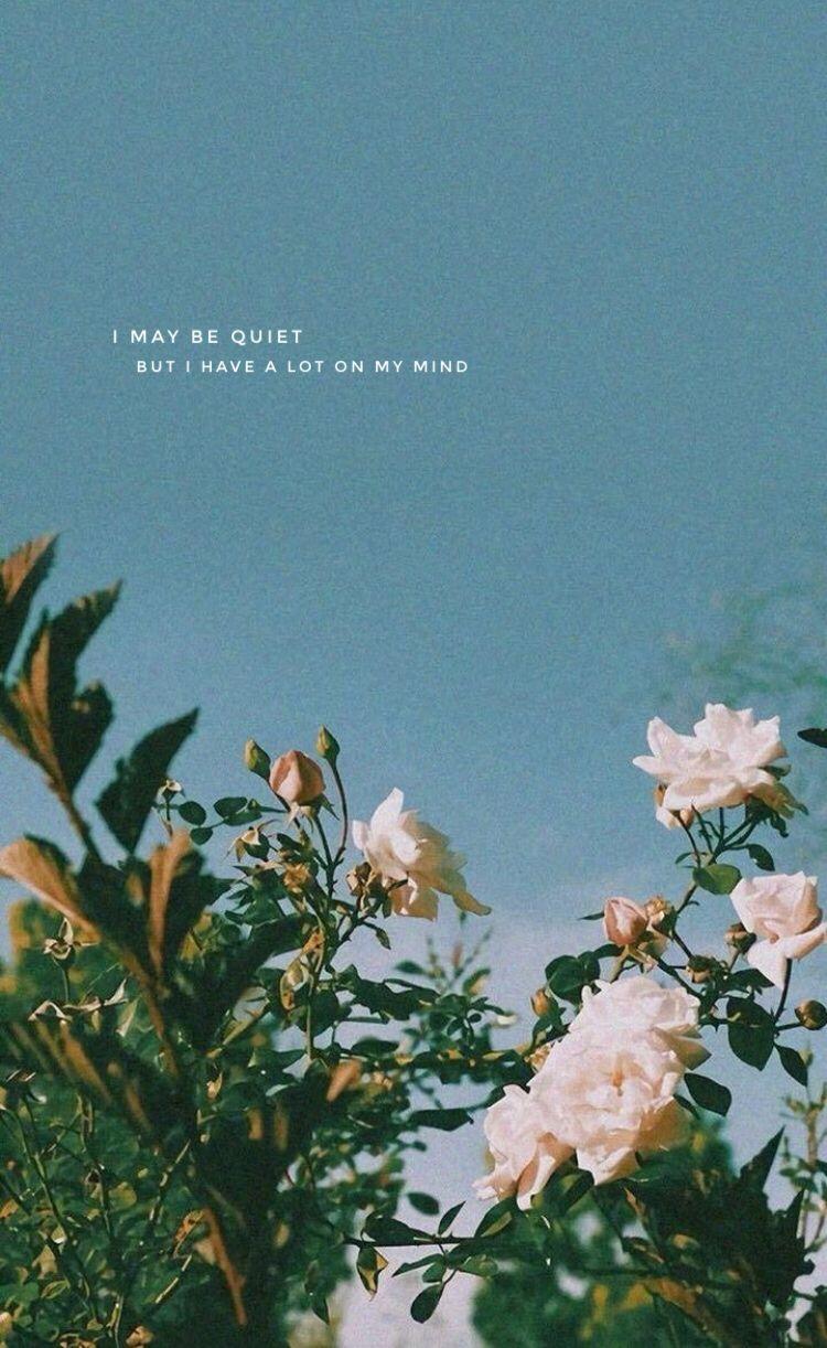 Afbeelding van Achtergronden van Meredith op Flower aesthetic