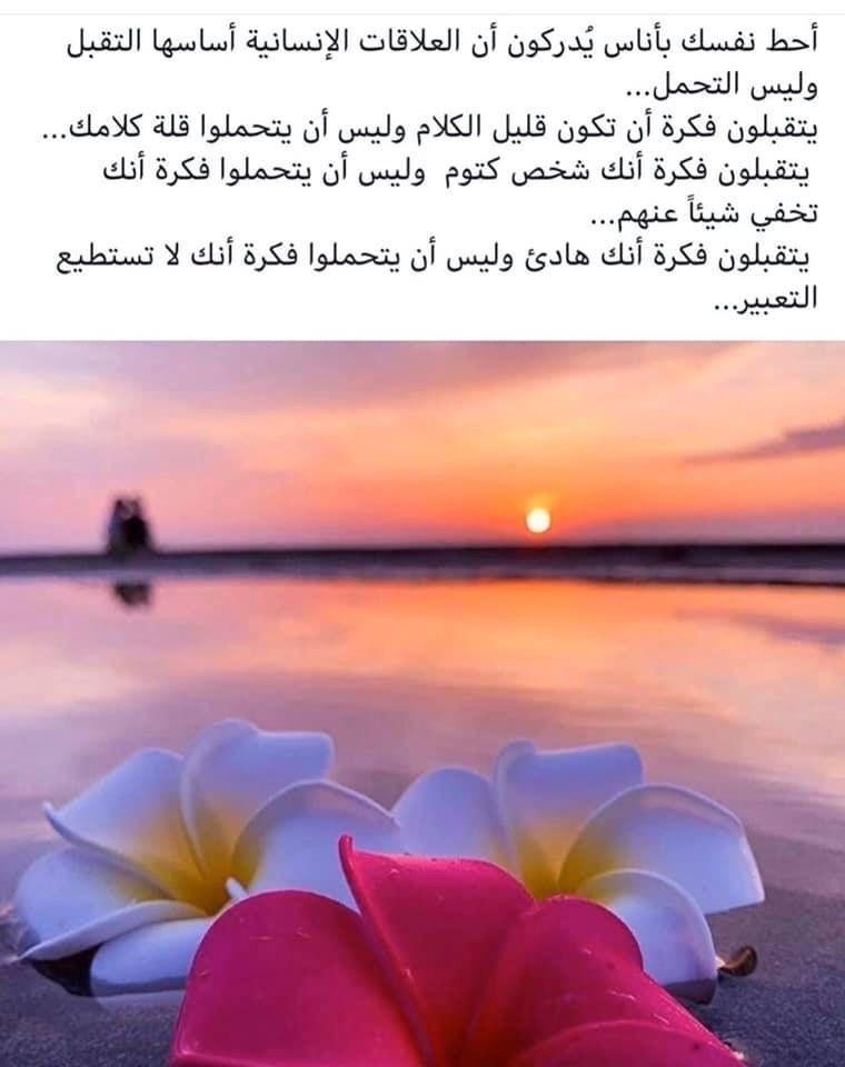 Pin By Samar Anan On صباح الخير Worth Reading Arabic Quotes Quotes