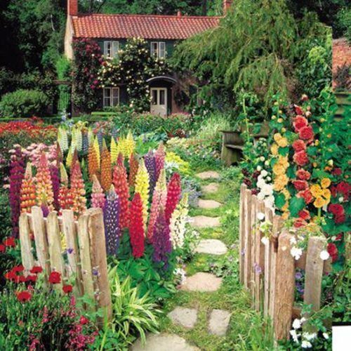 Photo of ▷ 1001+ fabulous images for front yard design