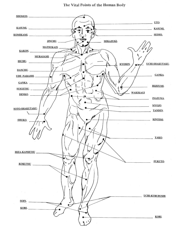 Vitalpoints Front Self Defense Martial Arts Martial Arts Workout Martial Arts Techniques