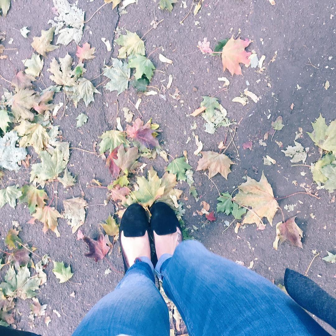 Oh hi autumn