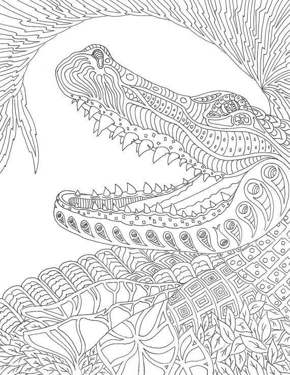 Pin On Snakes And Reptiles Coloring Pages