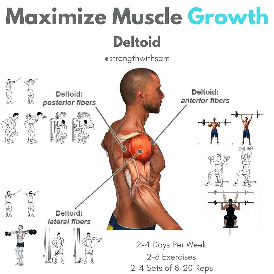 The 4 Best Exercises To Create 3d Shoulders Work Out Pinterest