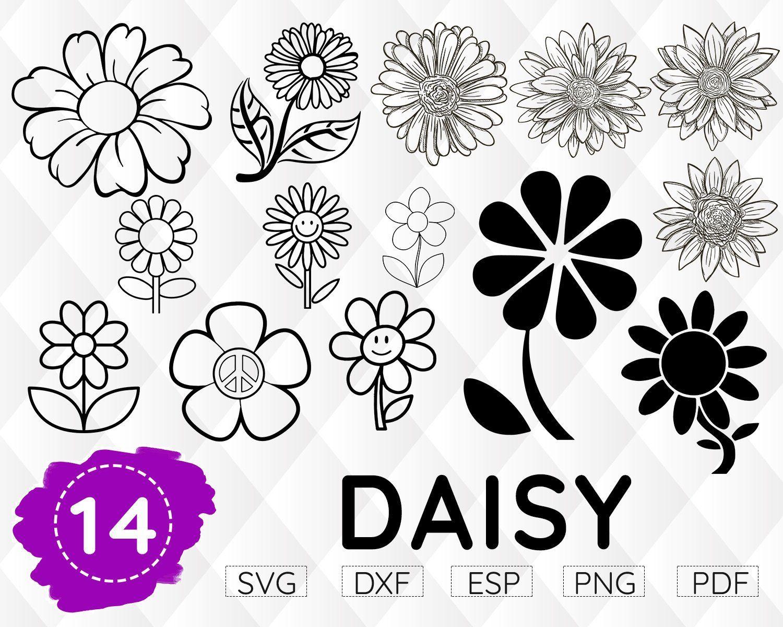 DAISY SVG, Gerber Daisy svg, floral svg, daisy Monogram, daisy