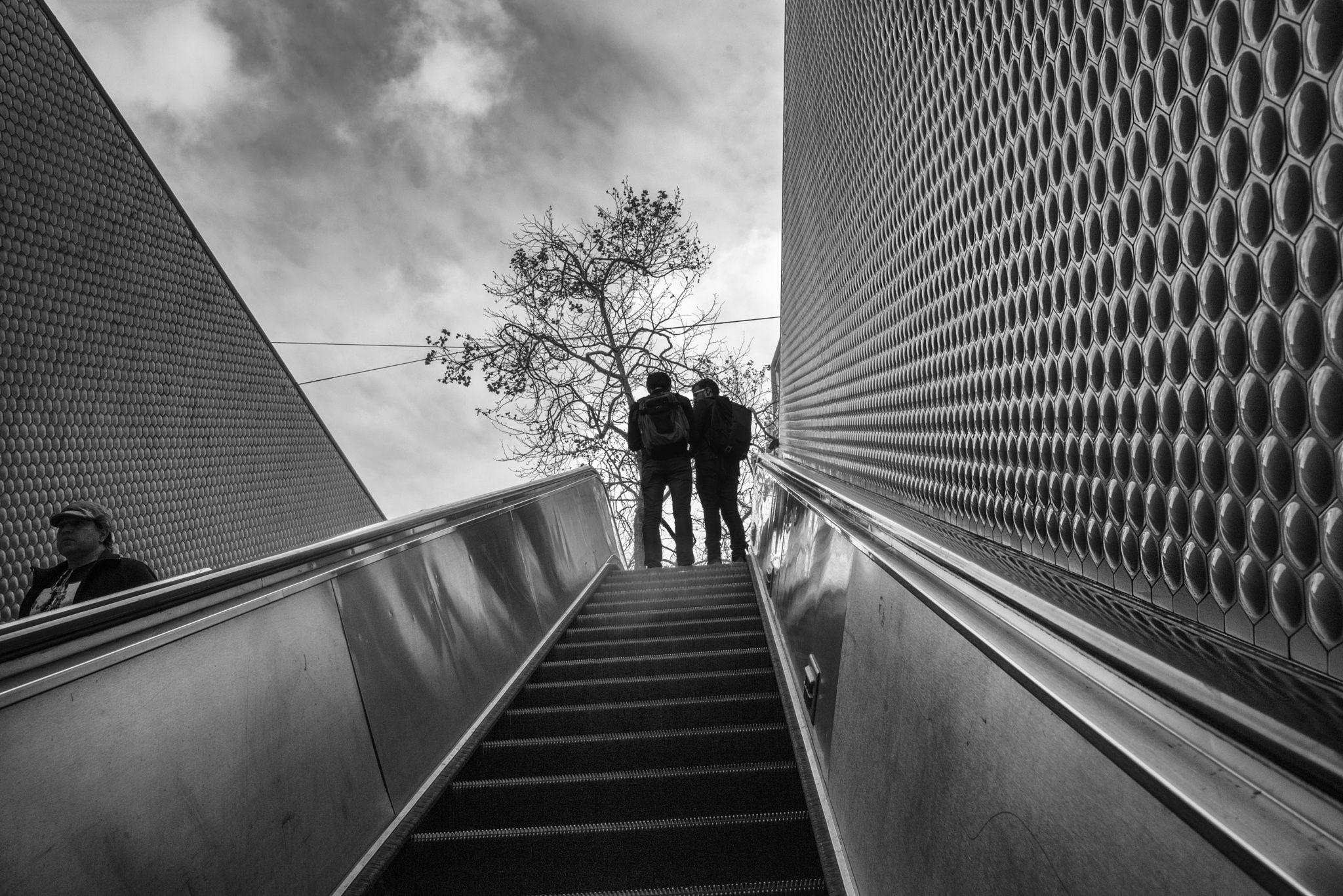 Ascending (San Francisco) by Jim Watkins on 500px