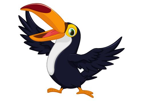 Cartoon Toucan Bird Vector 03 Bird Drawings Cartoon Bird