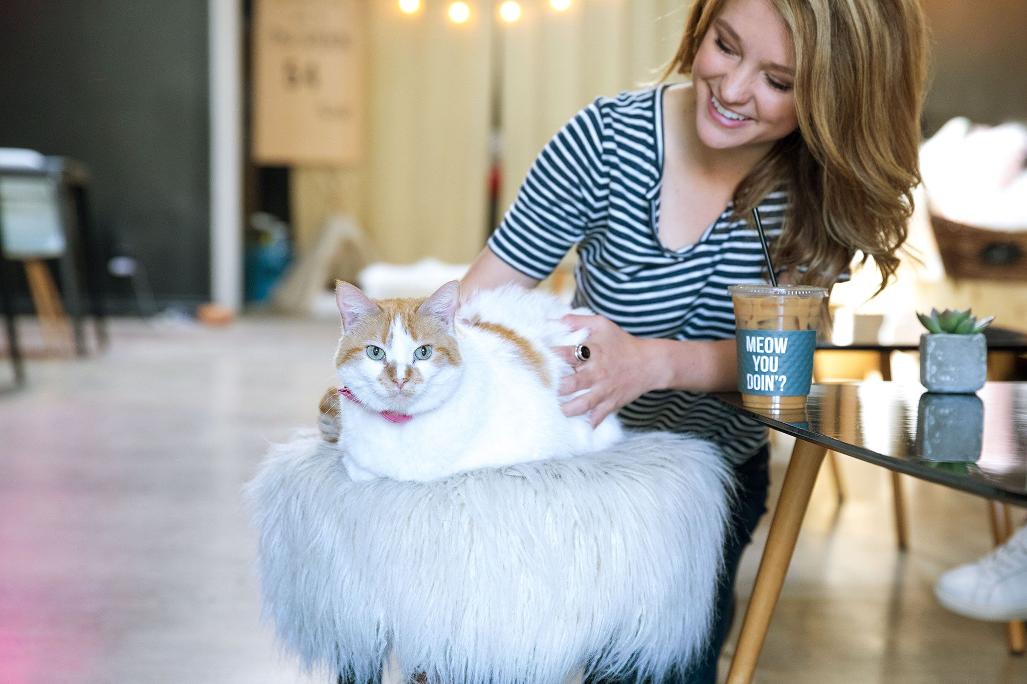 Squeeeeeee! Pet Cafes Around the World Pet cafe, Pets