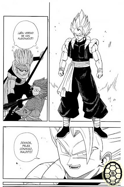 Poster 42x24 cm Dragon Ball Goku Vegeta Gogeta Vegito Manga Anime Cartel 01