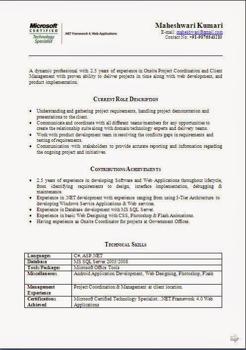 example of a cv for a job Sample Template Example ofExcellent ...