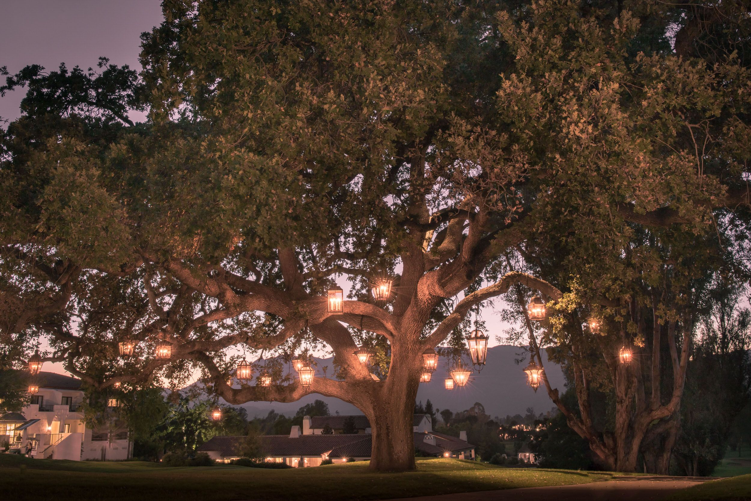 Hanging lights wedding decor  My Girls Weekend at The Ojai Valley Inn  s o m e d a y  Pinterest