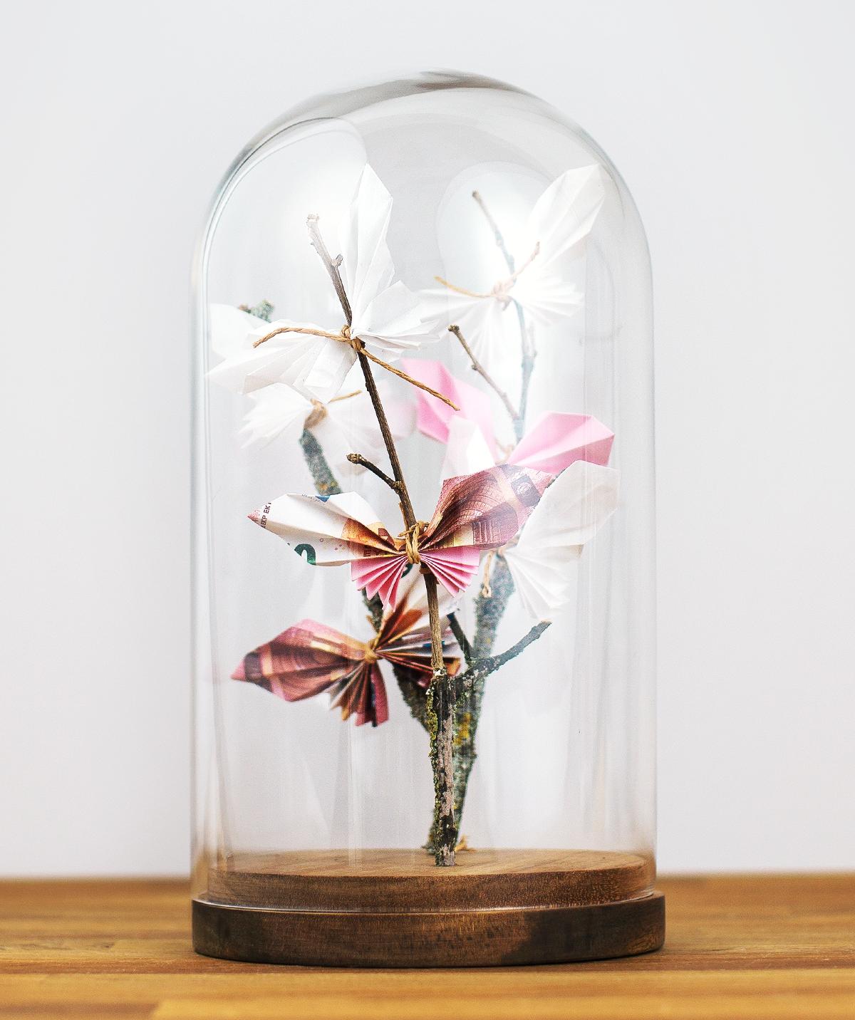 Photo of SCHÖNE Glasglocke mit Gegenglas – IKEA Deutschland – Creative –