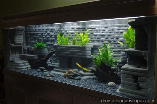 Dramatic Aquascapes Diy Aquarium Background Bob Kyaw