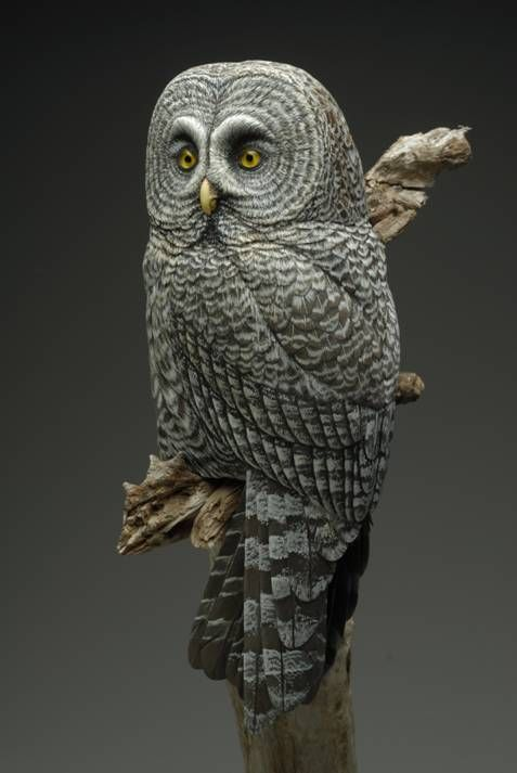 Realistic Bird Carvings By Ira Frost And Shane Emery