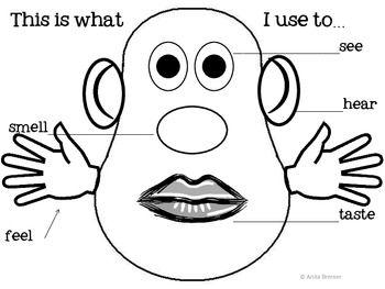 Five Senses Activities Booklet Craftivity Posters Senses Preschool My Five Senses Five Senses Preschool