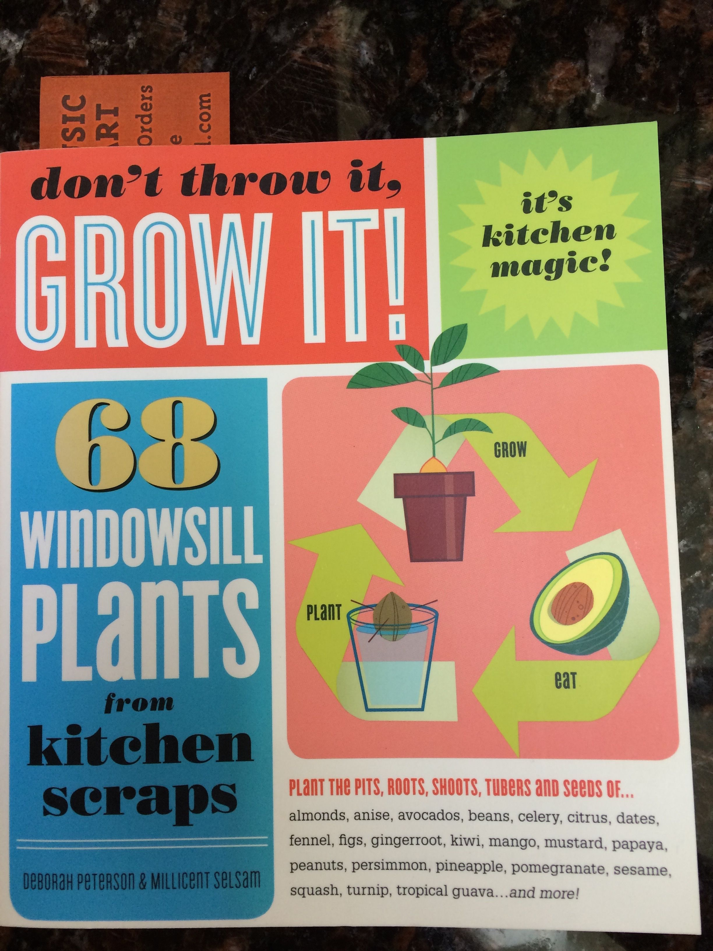 Growing plants from seeds my how to guide plants