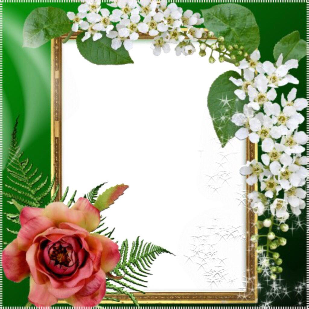 Pin by Pimnich on พุธ | Pinterest | Frame, Borders and frames and Itunes