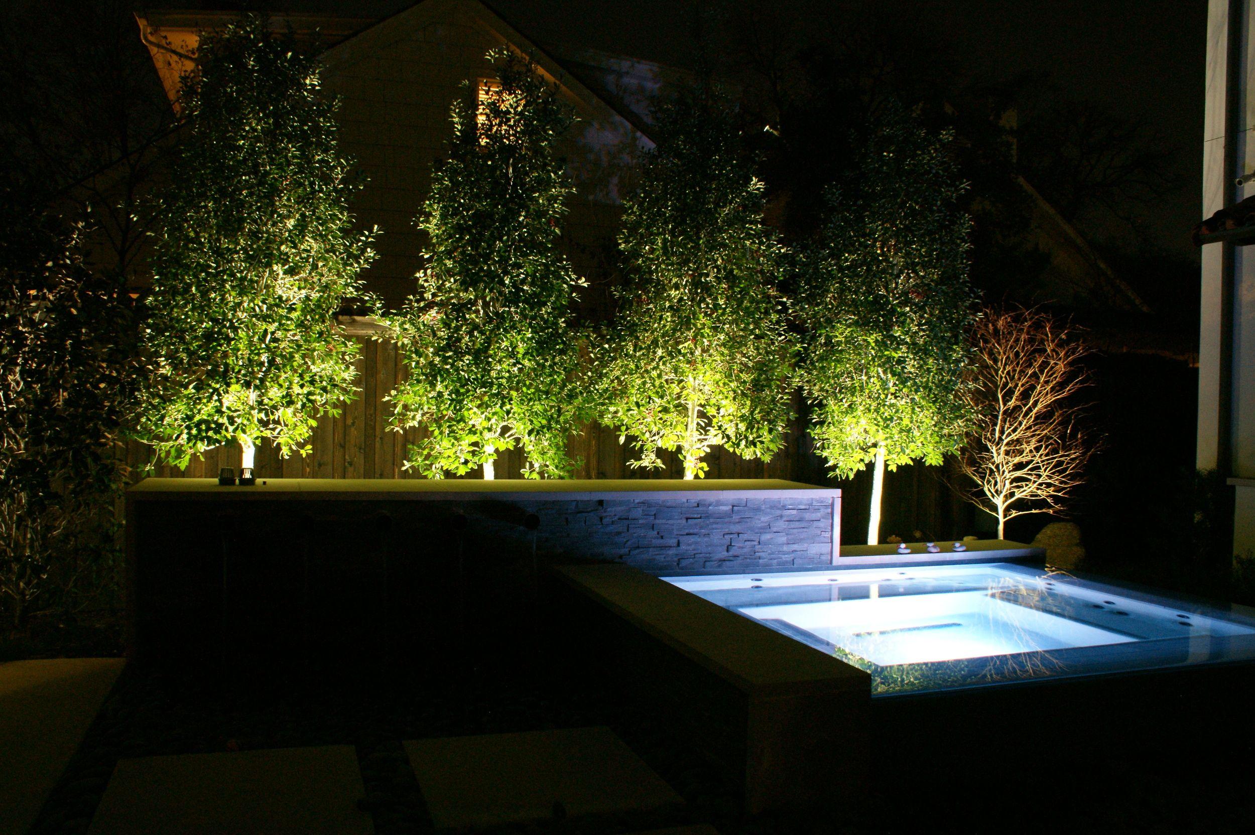 Dallas landscape lighting e2 illumination designs pinterest dallas landscape lighting aloadofball Images